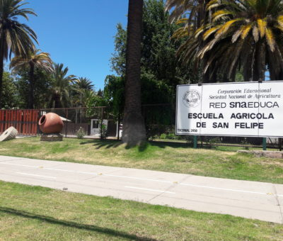 Terreno de Escuela Agrícola para Polideportivo es una alternativa para Municipalidad de San Felipe