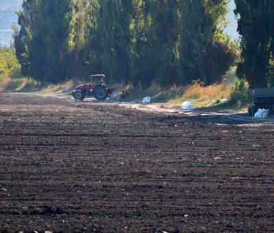 Denuncian a la Autoridad Sanitaria malos olores en Llay Llay por aplicación de guano en predios agrícolas