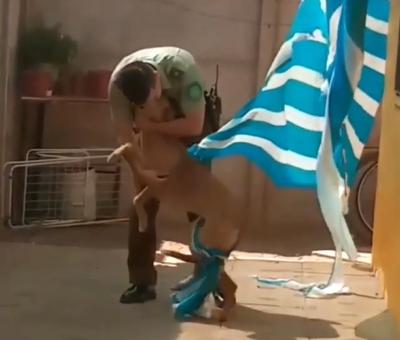 Acción de Subteniente de Carabineros de San Felipe ayudando a perro se hizo viral nacional