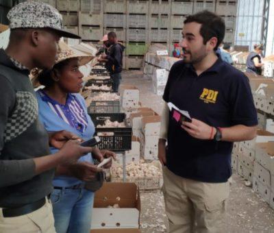 PDI detecta más extranjeros trabajando con visa de turistas en San Esteban