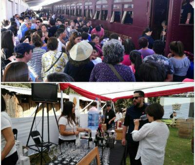 Fiesta de la Vendimia en Panquehue superó expectativas de público