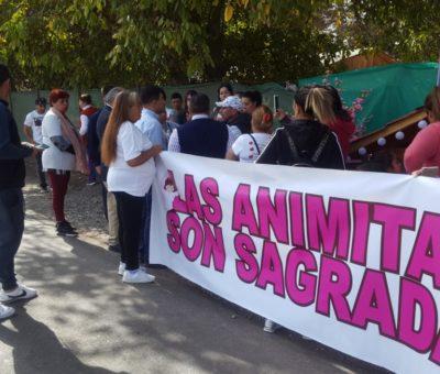 Gobernación de Los Andes y Vialidad buscarán solución a controversia por animita en Rinconada