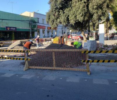 Desmienten problemas económicos para ejecutar trabajos de eliminar islas en la plaza de San Felipe