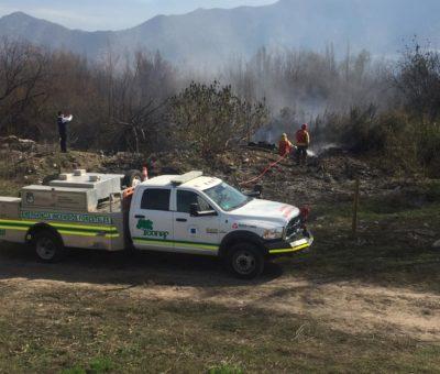 CONAF implementará primera brigada para combatir incendios forestales en Aconcagua
