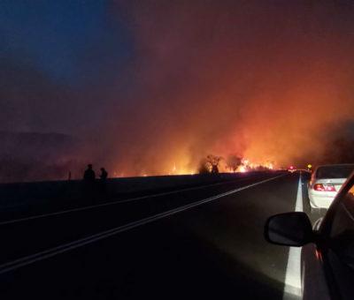 Incendio arrasó con 16 hectáreas de arbustos, pastizales y bosque entre Catemu y Panquehue