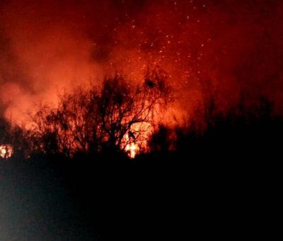 Incendio nuevamente arrasa con más de 10 hectáreas de forestación en ribera del río Aconcagua entre Catemu y Panquehue