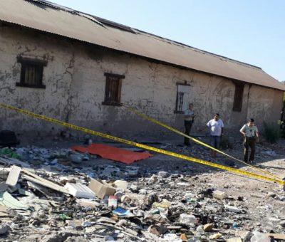 Traumatismo encéfalo craneal fue causa de muerte de recién nacido encontrado en sitio eriazo en San Felipe