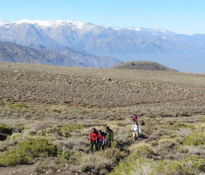 Contraloría General aprueba decreto que nombra Santuario de la Naturaleza El Zaino – Laguna El Copín en Santa María