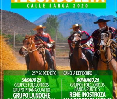 En Calle Larga este fin de semana se realizará la versión 44° de la Trilla a Yegua Suelta más grande de la Región