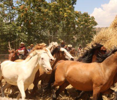 CORE aprueba recursos para trillas, Chayas y otros eventos para este verano en Aconcagua