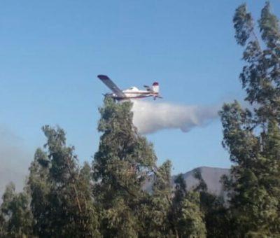 Bomberos y Conaf controlan incendio de bosque que puso en peligro viviendas en Panquehue
