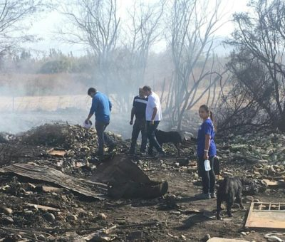 Incendio subterráneo en sector de Parrasía causa nube de humo que cubre San Felipe