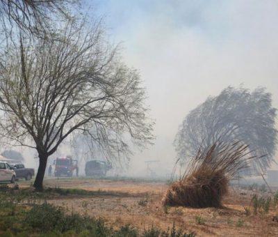 Incendio forestal  en sector bajo de Parrasia en San Felipe destruye 6 casas y deja gran cantidad de animales quemados